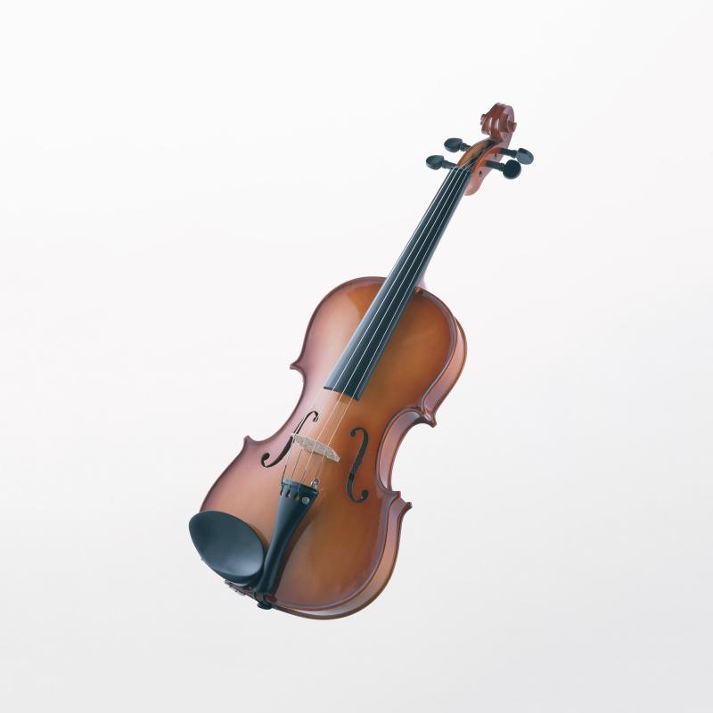 ヴァイオリン   楽器図鑑   カナデルームMAGAZINE